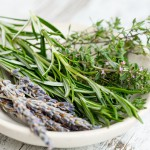 Herbs. Adaptógenos