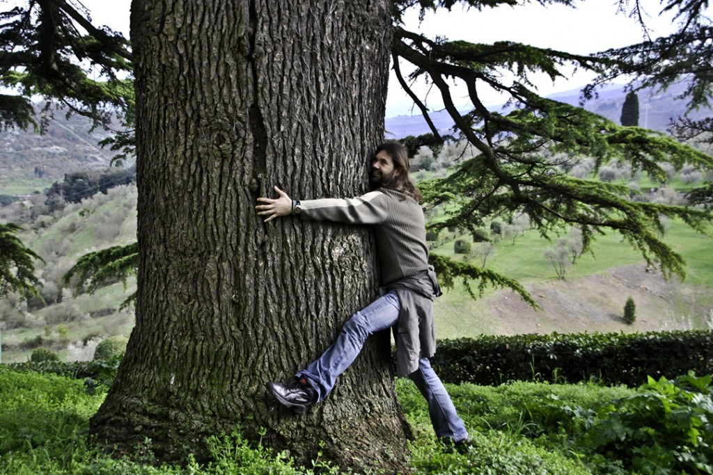 man-tree-nature-forest-plant-agriculture-1383992-pxhere.com